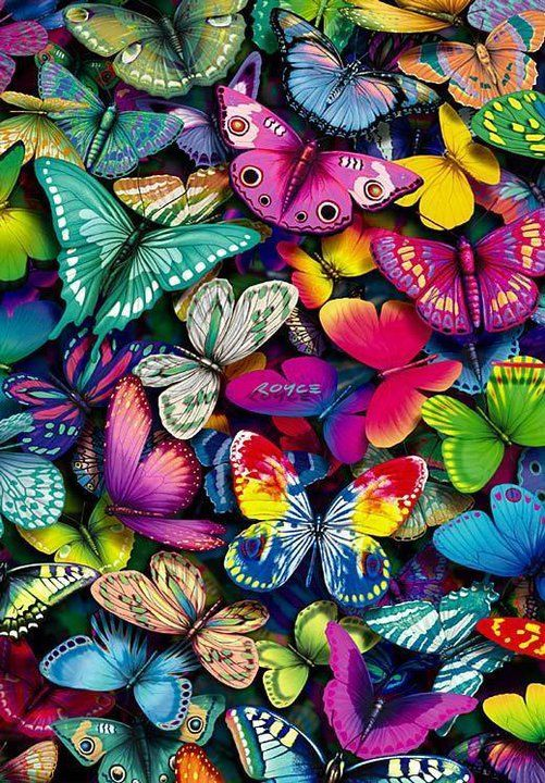 Colorful butterflies Trends: layering, multi form, bright colour scheme