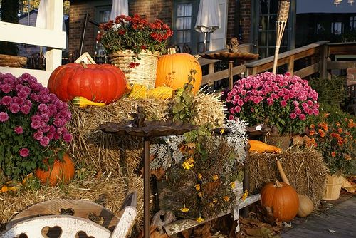 Outdoor Fall Decorations Holidays Pinterest