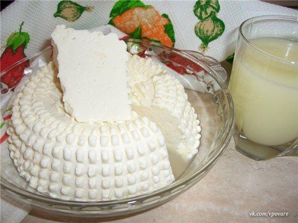 Сыр адыгейскийы из сметаны