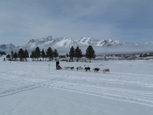 event stanley sled rendezvous
