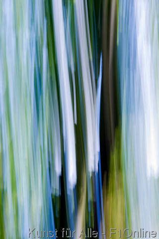 Abstraction of a tree blurred