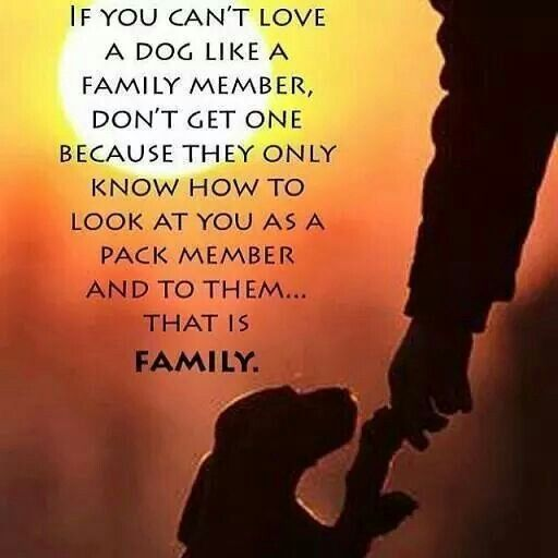 Crazy Family Quotes Loyalty. QuotesGram
