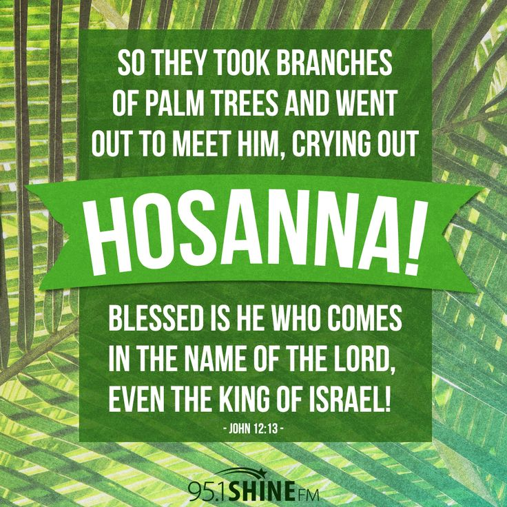 So they took branches of palm trees and went out to meet him, crying ...