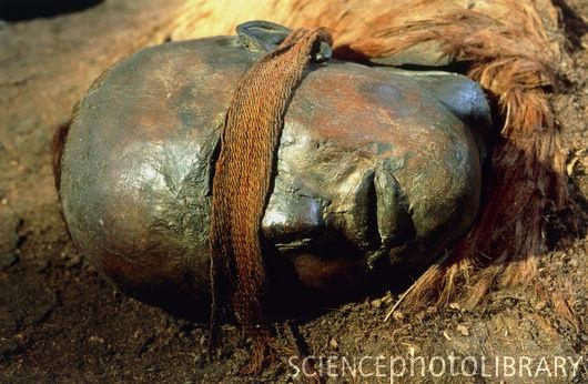 bog bodies windeby girl Moorleiche_von_tollund_jütland_um_100_n_chr_hingerichtetjpg uchter moor / moora [] moora schädeljpg.