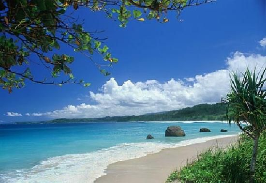 Cebu Island Philippines