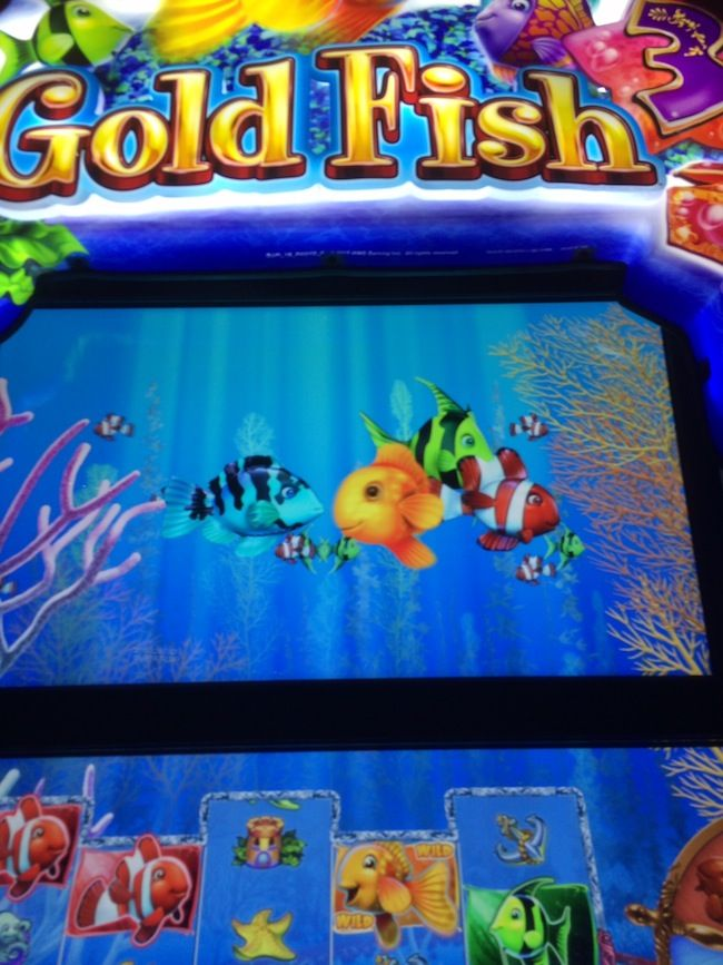 lion fish slot machine