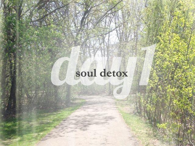no reading plans soul detox
