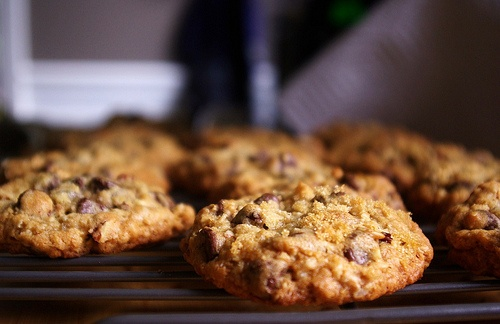 oatmeal pecan chocolate chip cookies. | Recipes | Pinterest