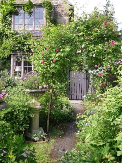 pinned using pinface country garden ideas pinterest
