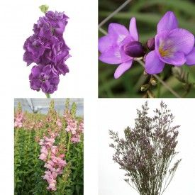 Purple/Lavender wedding flowers are in style and in season from The Grower's Box! Purple/Lavender Stock, Freesia, Snapdragons and Limonium are all available year-round and conveniently packaged in one affordable box of DIY wedding flowers!