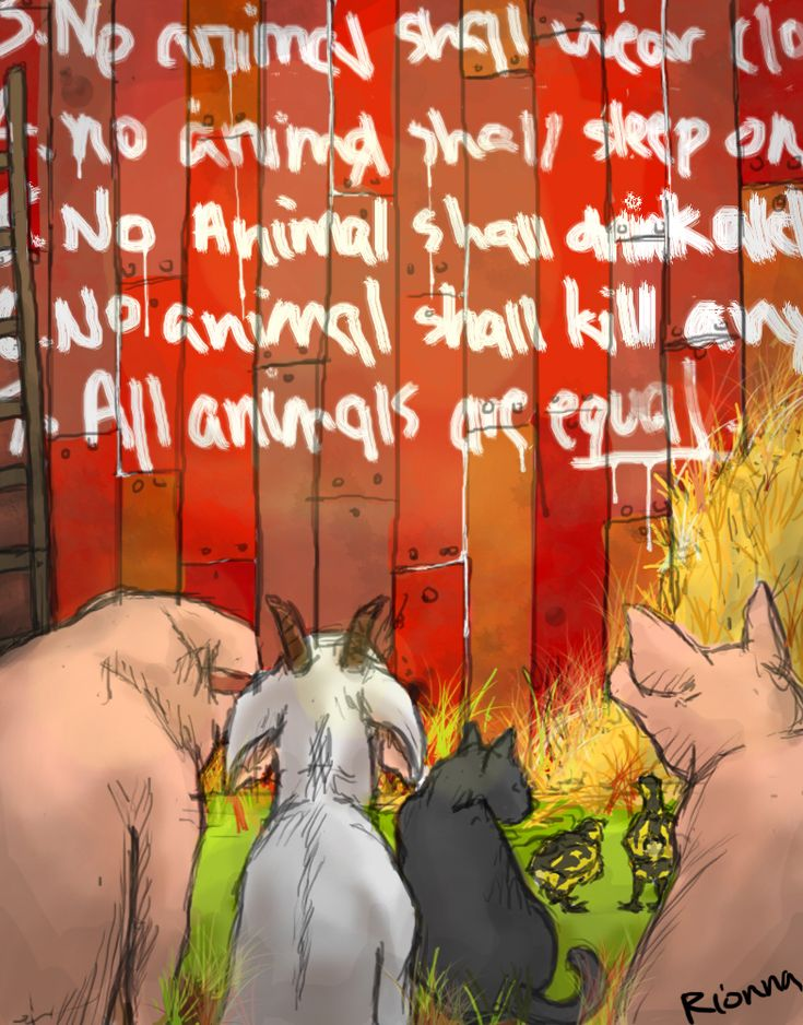 an analysis of the character of boxer in animal farm by george orwell Character analysis animal farm animal farm is an allegory of the bolshevik revolution written by george orwell most of the allegorical characteristics in the novel can be found within the characters and their actions.