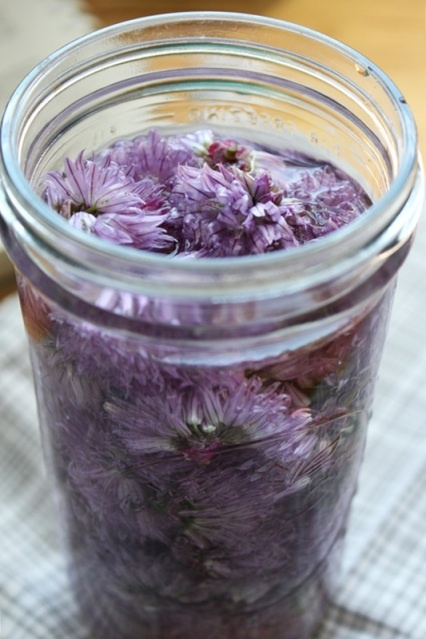 Chive Blossom Vinegar | Did That | Pinterest