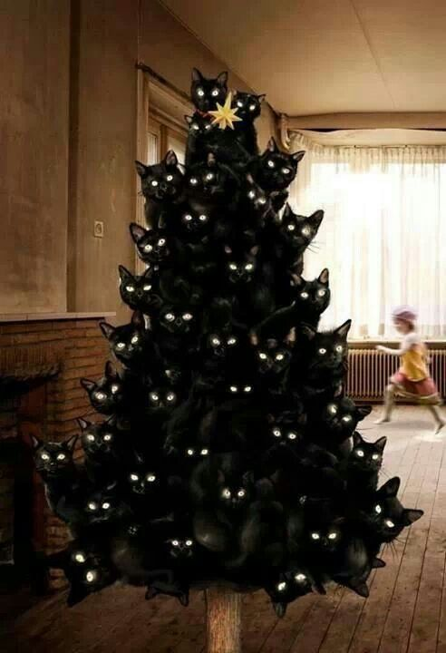 tree of black cats.....