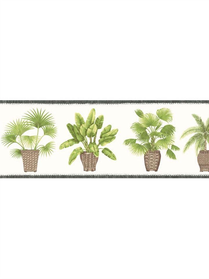kitchen bath sunworthy palm wallpaper border kb206685b