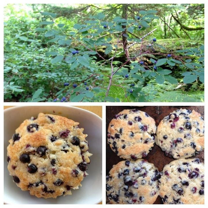 Blueberry Coffee Cake Muffins | Sweet Tooth | Pinterest