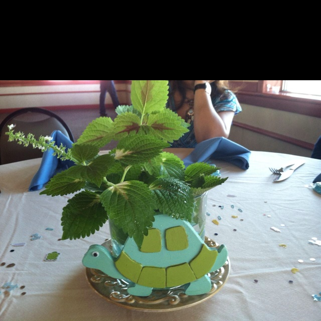 turtle themed baby shower baby shower ideas pinterest
