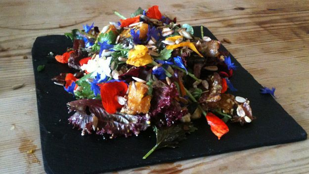 Roasted Butternut Squash & Blue Cheese Salad Recipe from River Cottage ...