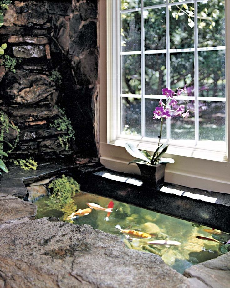 Do it yourself indoor outdoor koi pond living the pond for Awesome koi ponds