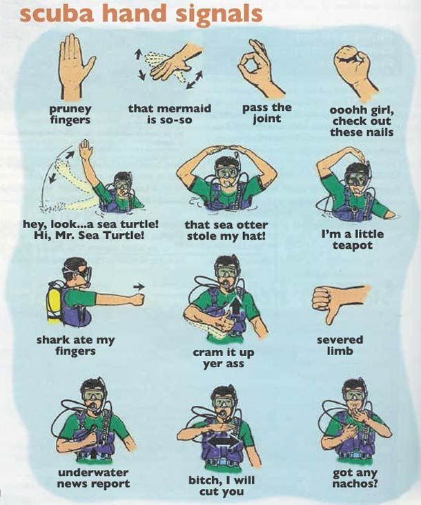 new scuba sign language 1 of 2 funny things pinterest