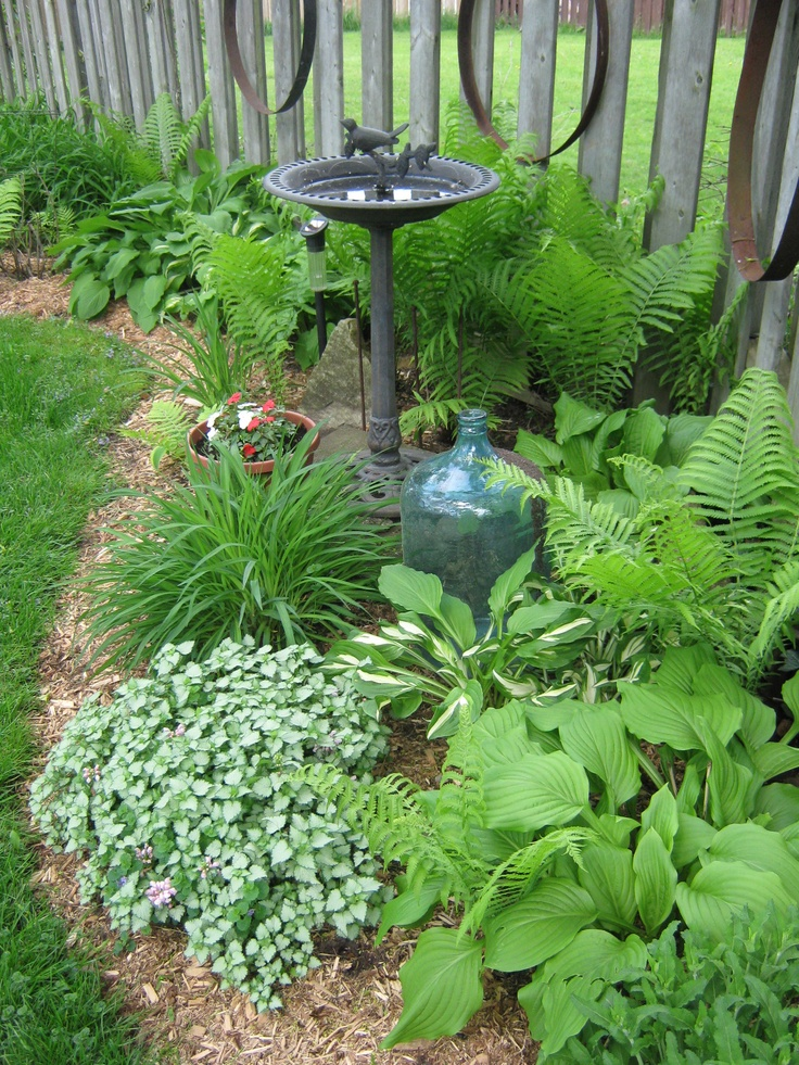 Partial Shade Garden Ideas Photograph Part Of The Shade Ga