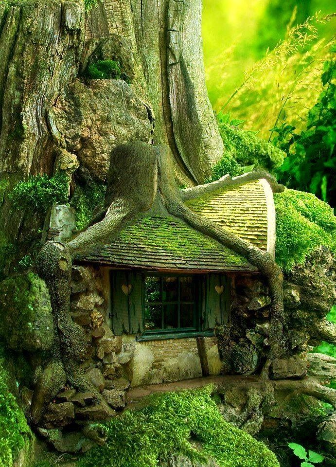 Exquisite house built under tree roots louise hamlin for Houses built in trees
