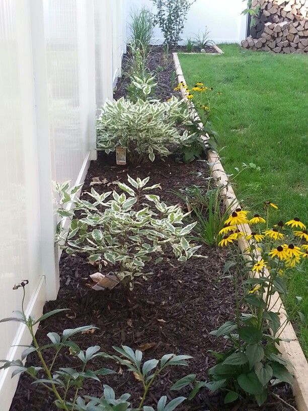 Fence line landscaping garden pinterest - Garden ideas along fence line ...