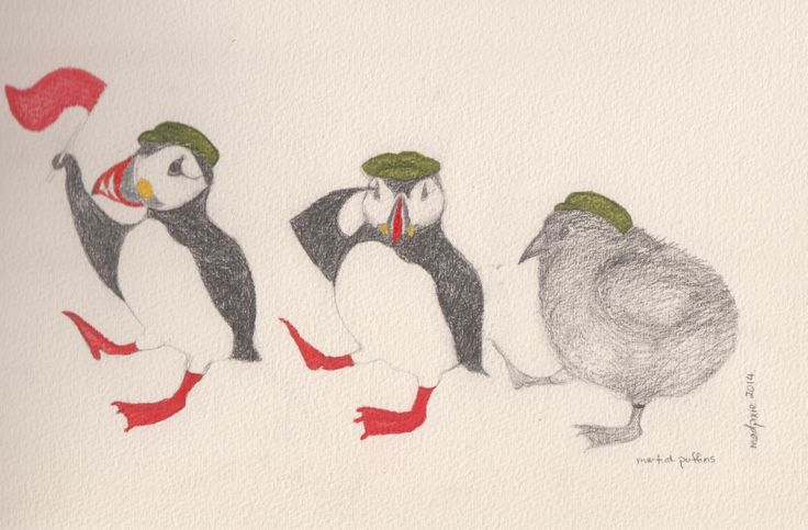 Martial Puffins Final Study | Drawing conclusions | Pinterest