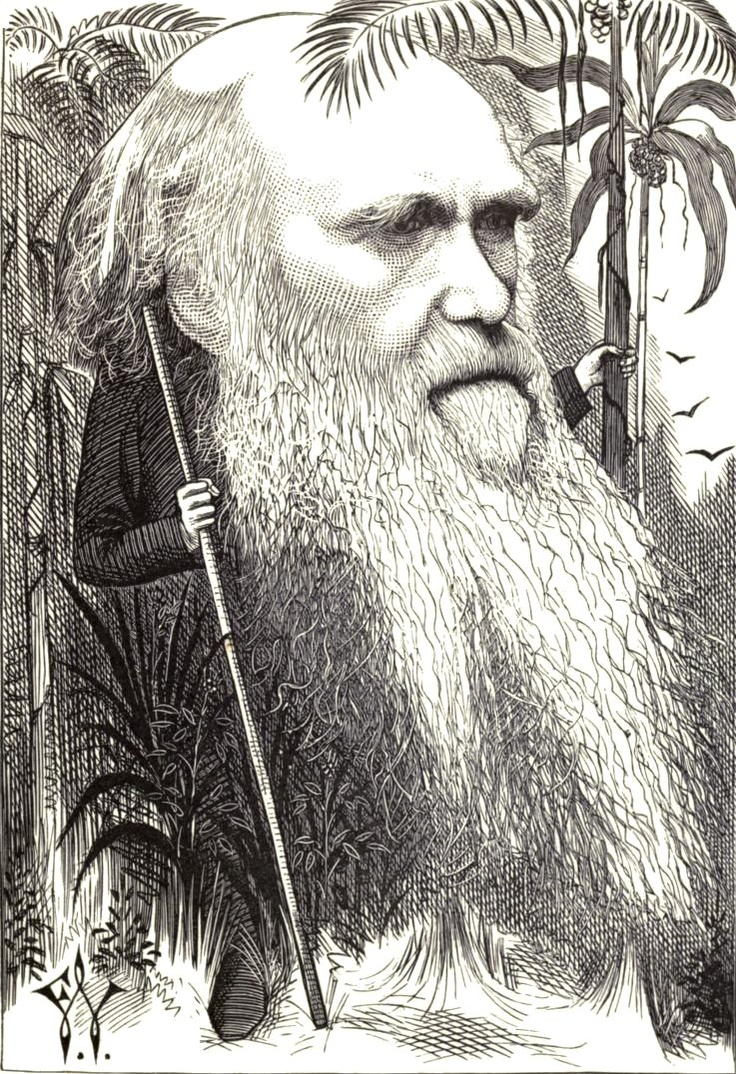 charles darwin and the theory of Charles darwin is renowned in many countries across the globe as the man who  developed the theory of evolution his theory sets about explaining the.