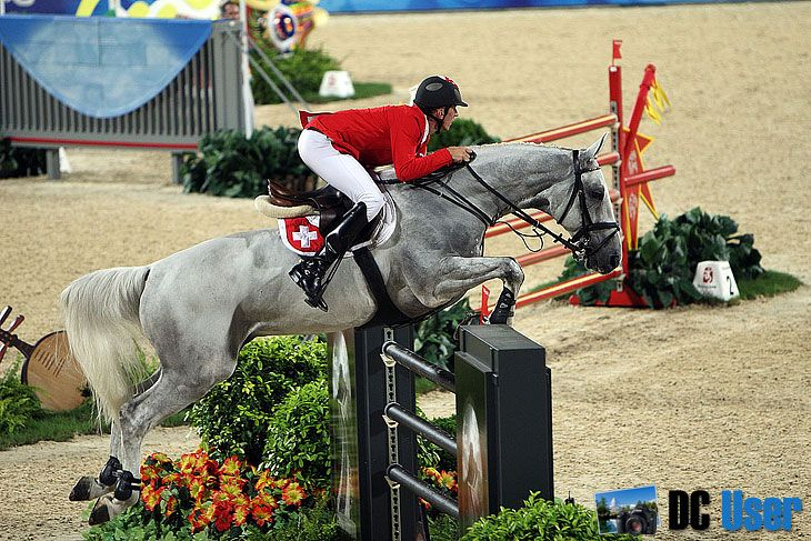 Horses Jumping In The Olympics