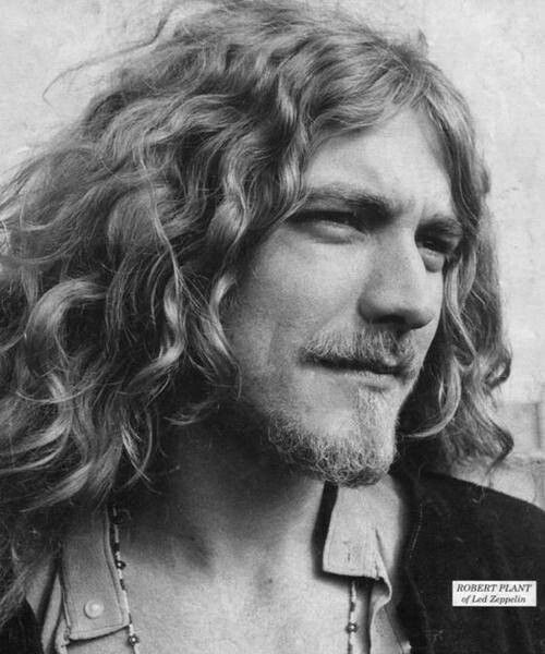 Young Robert Plant | LED ZEPPELIN/JIMMY PAGE | Pinterest Jude Law
