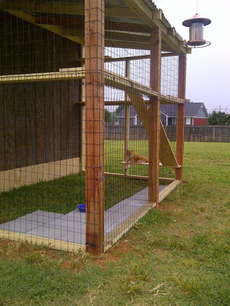 Outdoor Cat Enclosure Cat Enclosures Pinterest