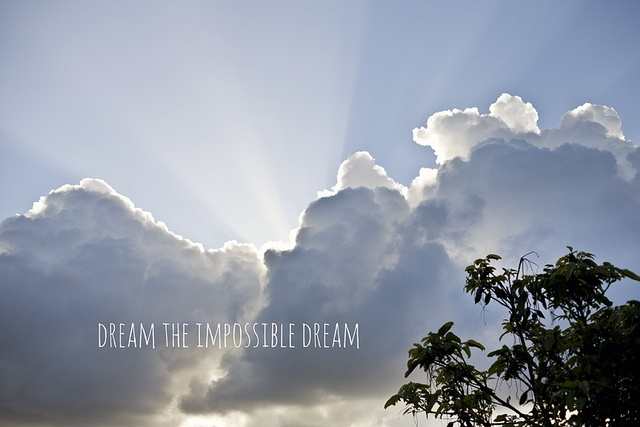 Dream the impossible dream what they said pinterest