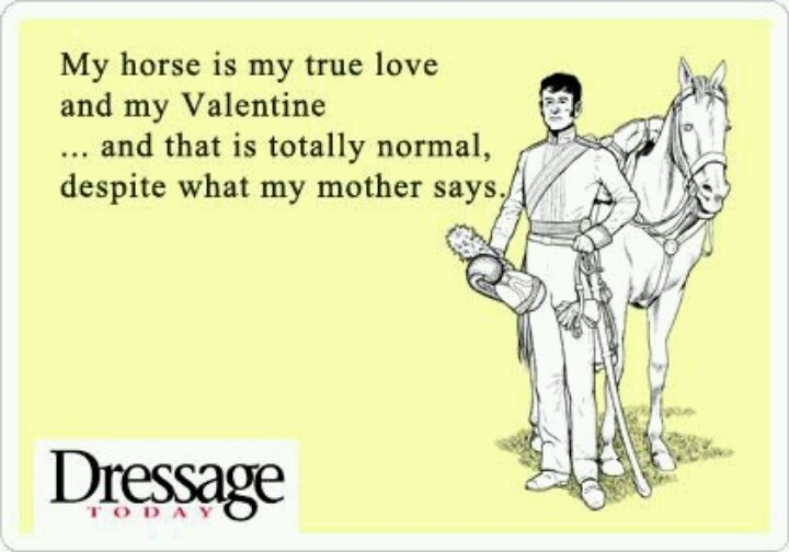 valentine's day horse box