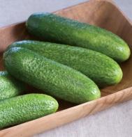 Cucumber: Harmonie