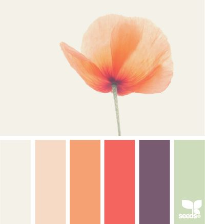 Fall Inspired Color Palettes - poppy tones
