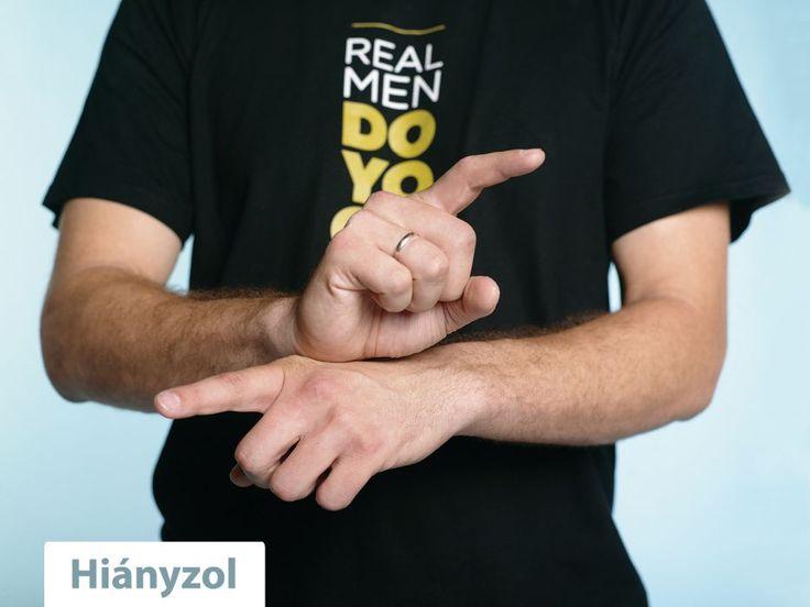 I Miss You Sign Language Hsl: hi�nyzol - i miss you
