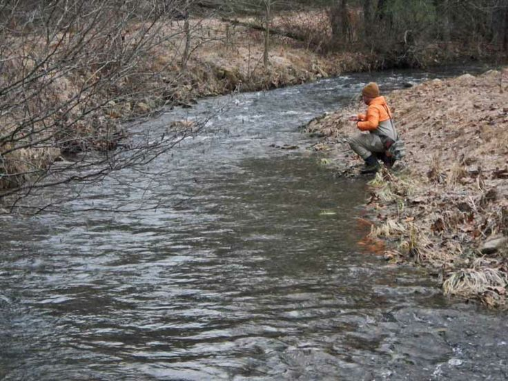 Pin by wtm on fly fishing pinterest for Fly fishing virginia