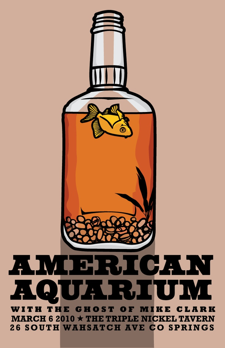 American Aquarium Poster Band Posters Pinterest