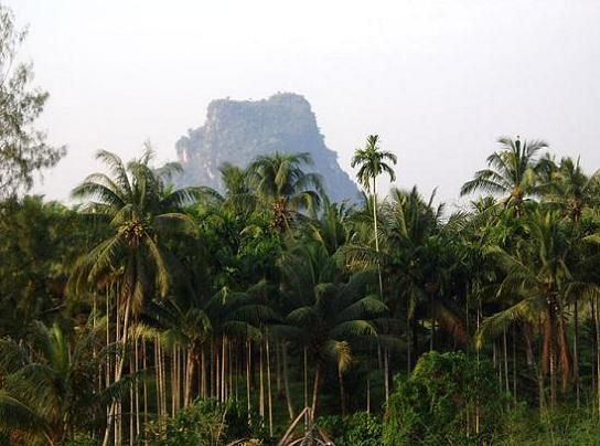 thailand park reserve national parks