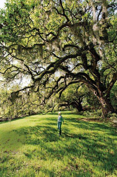 A Photo Tour Of Charleston South Carolina America 39 S No 1 City