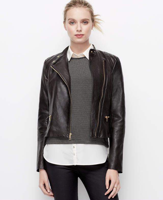 Petite Leather Moto Jacket | Ann Taylor