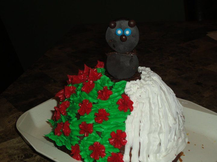 Groundhog Day cake. | Groundhog. Day. | Pinterest