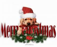 Merry Christmas Clip Art - Bing Images | Xmas images | Pinterest
