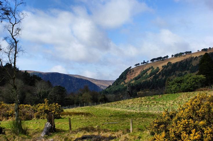 Glendalough -  County Wicklow, Ireland