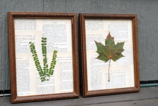 diy botanicals - scan & print them and they'll be lovely forever.