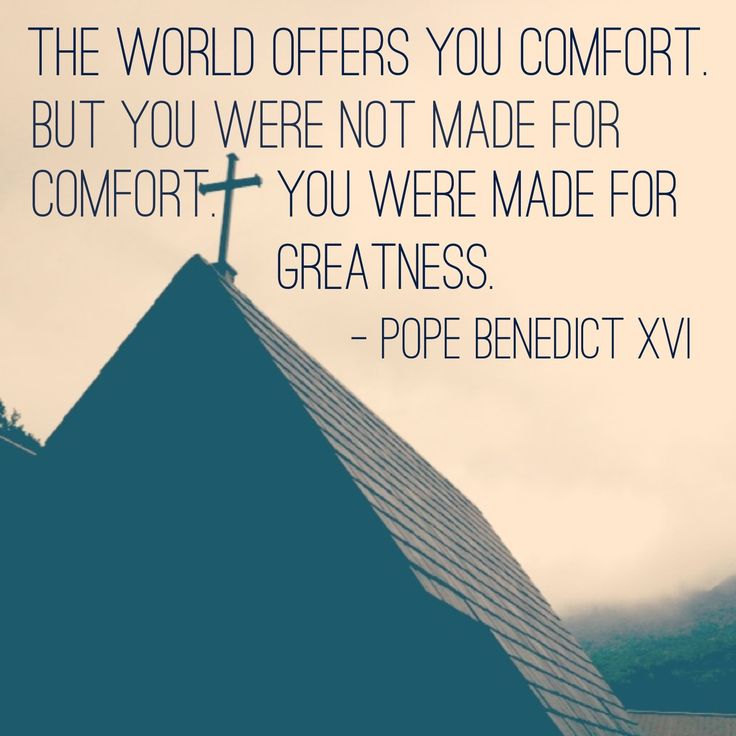 The world offers you comfort. But you were not made for comfort. You were made for greatness. - Pope Benedict