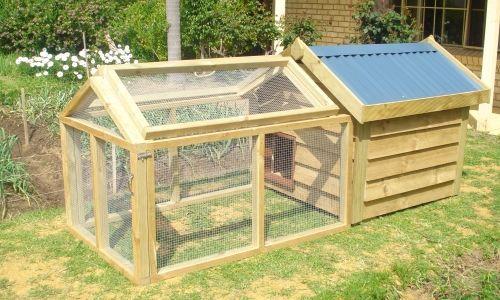 Suburban Backyard Chickens : Backyard Chicken Pens, Organic Chickens, Free Range Eggs, Chicken