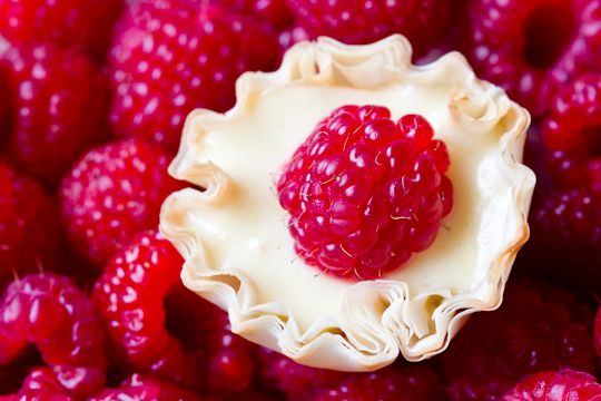 Lemonade Tarts - lemons and raspberries is one of my favorite ...