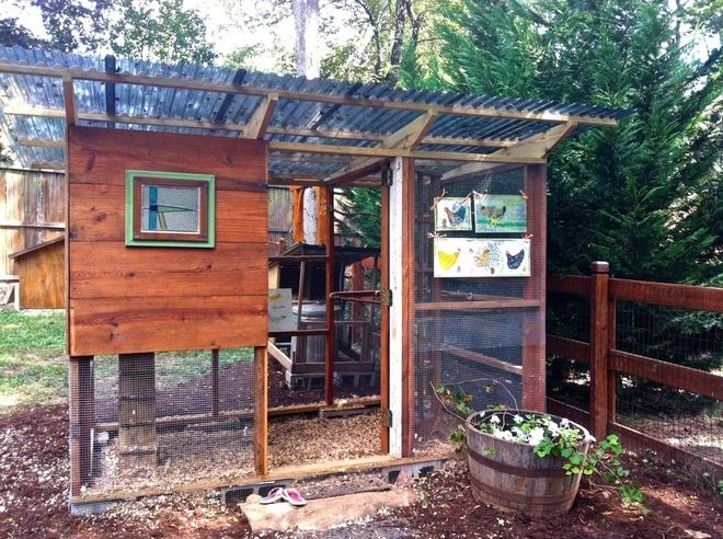 concept Call me to find just the right backyard for your chickens