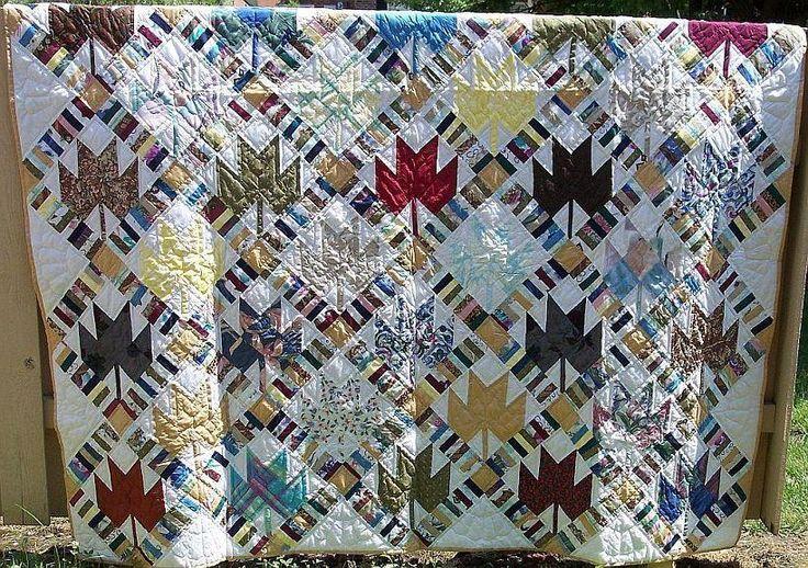 Quilt Pattern For Maple Leaf : maple leaf quilt Quilt Patterns Pinterest